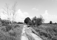 kaliningrad-koenigsberg-gumbinnen-gussew-karszamupchen-weg