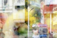 3-analog-mehrfachbelichtung-diapositiv-hamburg-altona-pflanzen-blumen